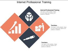 Internet Professional Training Ppt Powerpoint Presentation Infographic Template Graphics Cpb