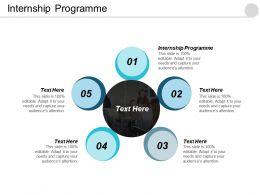 Internship Programme Ppt Powerpoint Presentation Icon Show Cpb