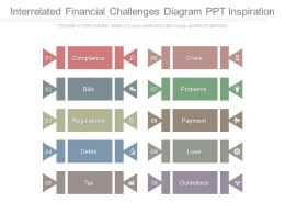 Interrelated Financial Challenges Diagram Ppt Inspiration