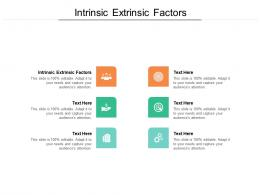 Intrinsic Extrinsic Factors Ppt Powerpoint Presentation Professional Inspiration Cpb