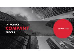 Introduce Company Profile Powerpoint Presentation Slides