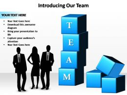 introducing our team powerpoint slides templates