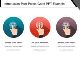 Introduction Pain Points Good Ppt Example