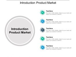 Introduction Product Market Ppt Powerpoint Presentation Slides Portrait Cpb
