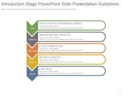 Introduction Stage Powerpoint Slide Presentation Guidelines