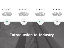 Introduction To Industry Audience Attention Ppt Powerpoint Presentation Slides