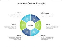Inventory Control Example Ppt Powerpoint Presentation Professional Pictures Cpb