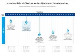 Investment Gantt Chart For Vertical Horizontal Transformations