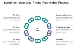 Investment Incentives Private Partnership Process Optimization Company Goals
