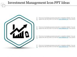 Investment Management Icon Ppt Ideas