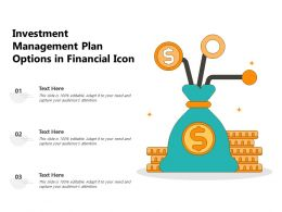 Investment Management Plan Options In Financial Icon