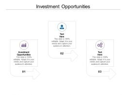 Investment Opportunities Ppt Powerpoint Presentation Outline Model Cpb