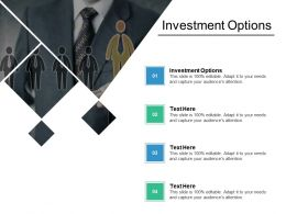 Investment Options Ppt Powerpoint Presentation Icon Background Cpb