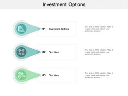 Investment Options Ppt Powerpoint Presentation Model Mockup Cpb