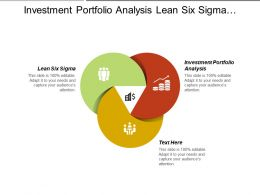 Investment Portfolio Analysis Lean Six Sigma Prioritizing Activities Management Cpb