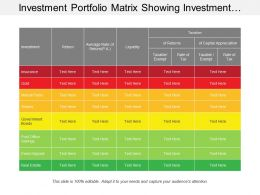 Investment Portfolio Matrix Showing Investment Return And Liquidity Risk