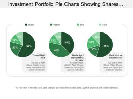 Investment Portfolio Pie Charts Showing Shares Property Bond Cash Risk Investor