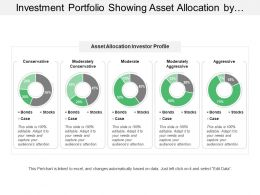 Investment Portfolio Showing Asset Allocation By Investor Profile