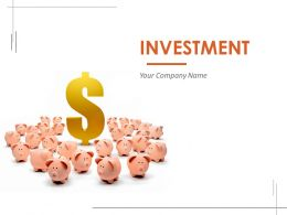 Investment Powerpoint Presentation Slides