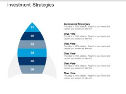 Investment Strategies Ppt Powerpoint Presentation Icon Inspiration Cpb