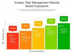 Investor Risk Management Maturity Model Framework