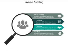 Invoice Auditing Ppt Powerpoint Presentation Gallery Structure Cpb