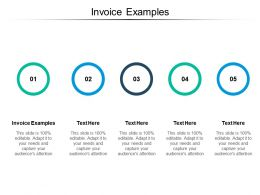 Invoice Examples Ppt Powerpoint Presentation Icon Background Designs Cpb