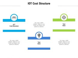 IOT Cost Structure Ppt Powerpoint Presentation Infographic Template Graphics Example Cpb