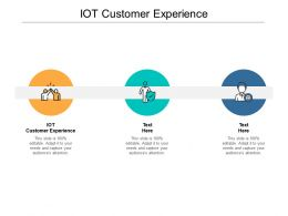 IOT Customer Experience Ppt Powerpoint Presentation Pictures Example Topics Cpb