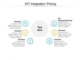 IOT Integration Pricing Ppt Powerpoint Presentation Summary Themes Cpb