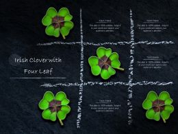 Irish Clover With Four Leaf