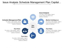 Issue Analysis Schedule Management Plan Capital Market Opportunity Drivers
