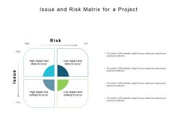 Issue And Risk Matrix For A Project