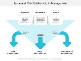 Issue And Risk Relationship In Management