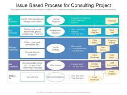 Issue Based Process For Consulting Project