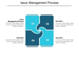 Issue Management Process Ppt Powerpoint Presentation File Guidelines Cpb