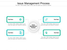 Issue Management Process Ppt Powerpoint Presentation Infographic Template Microsoft Cpb