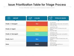 Issue Prioritization Table For Triage Process