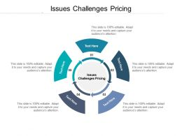 Issues Challenges Pricing Ppt Powerpoint Presentation Show Graphics Cpb