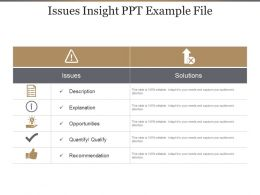 Issues Insight Ppt Example File