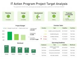 IT Action Program Project Target Analysis