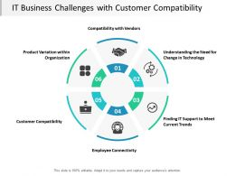 It Business Challenges With Customer Compatibility