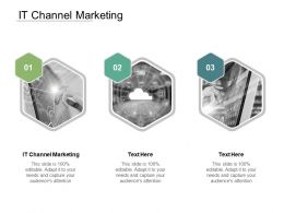 It Channel Marketing Ppt Powerpoint Presentation Summary Example Introduction Cpb