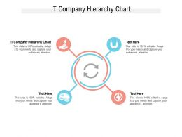 IT Company Hierarchy Chart Ppt Powerpoint Presentation Styles Styles Cpb