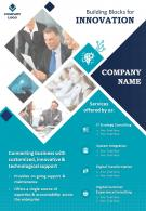 IT Consultant Two Page Brochure Template