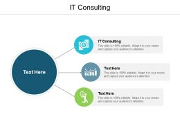 IT Consulting Ppt Powerpoint Presentation Infographic Template Format Ideas Cpb