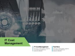 IT Cost Management Ppt Powerpoint Presentation Infographics Sample Cpb