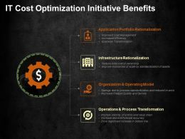 It Cost Optimization Initiative Benefits Ppt Visual Aids Background Images