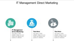 It Management Direct Marketing Ppt Powerpoint Presentation Infographic Template Show Cpb