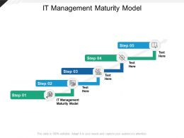 IT Management Maturity Model Ppt Powerpoint Presentation Model Tips Cpb